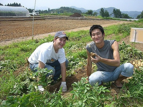 All about WWOOF: How it Works and What You Need to Know