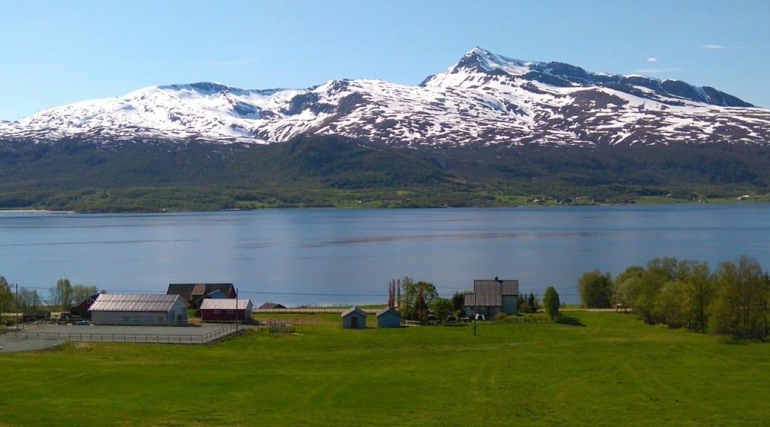 Organic farming north of the Arctic Circle